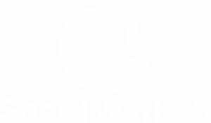 PNG Logo White
